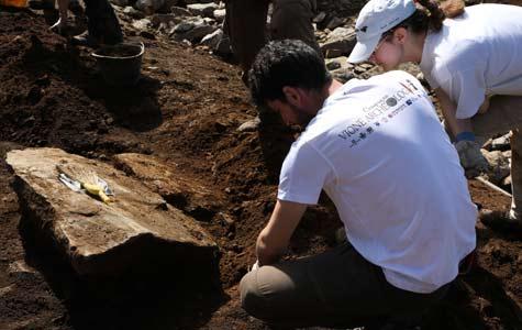 Vione Archeologica - IL PROGETTO