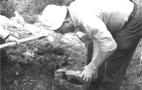 Vione Archeologica Storica