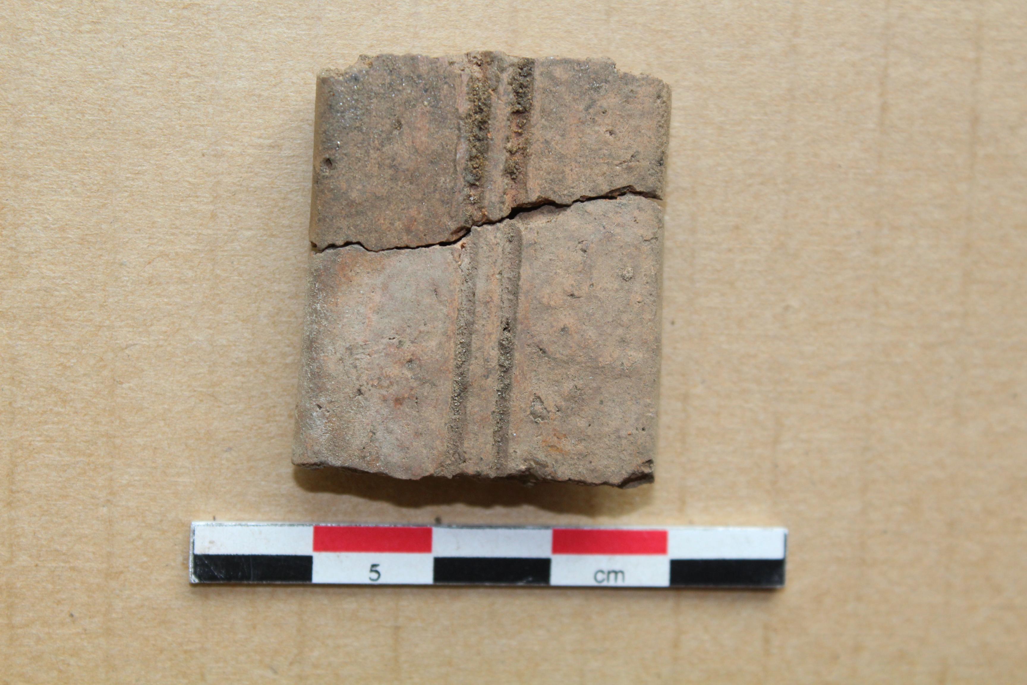 Vione Archeologica fase protostorica